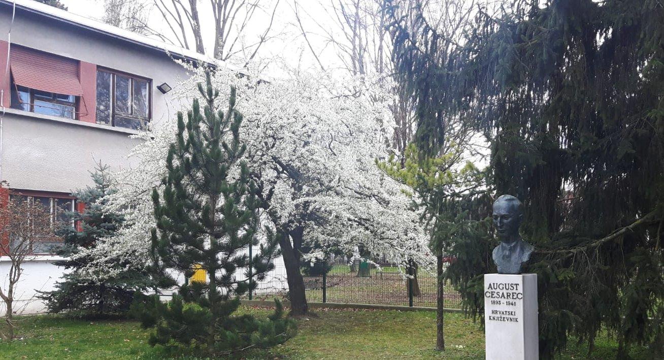 Osnovna Skola Augusta Cesarca Zagreb Fotogalerija